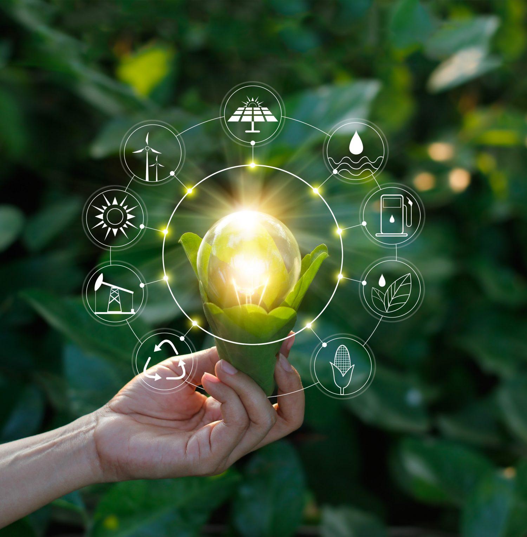 คุณมี IQ เท่าไรในเรื่องการใช้พลังงานอย่างมีประสิทธิภาพ?