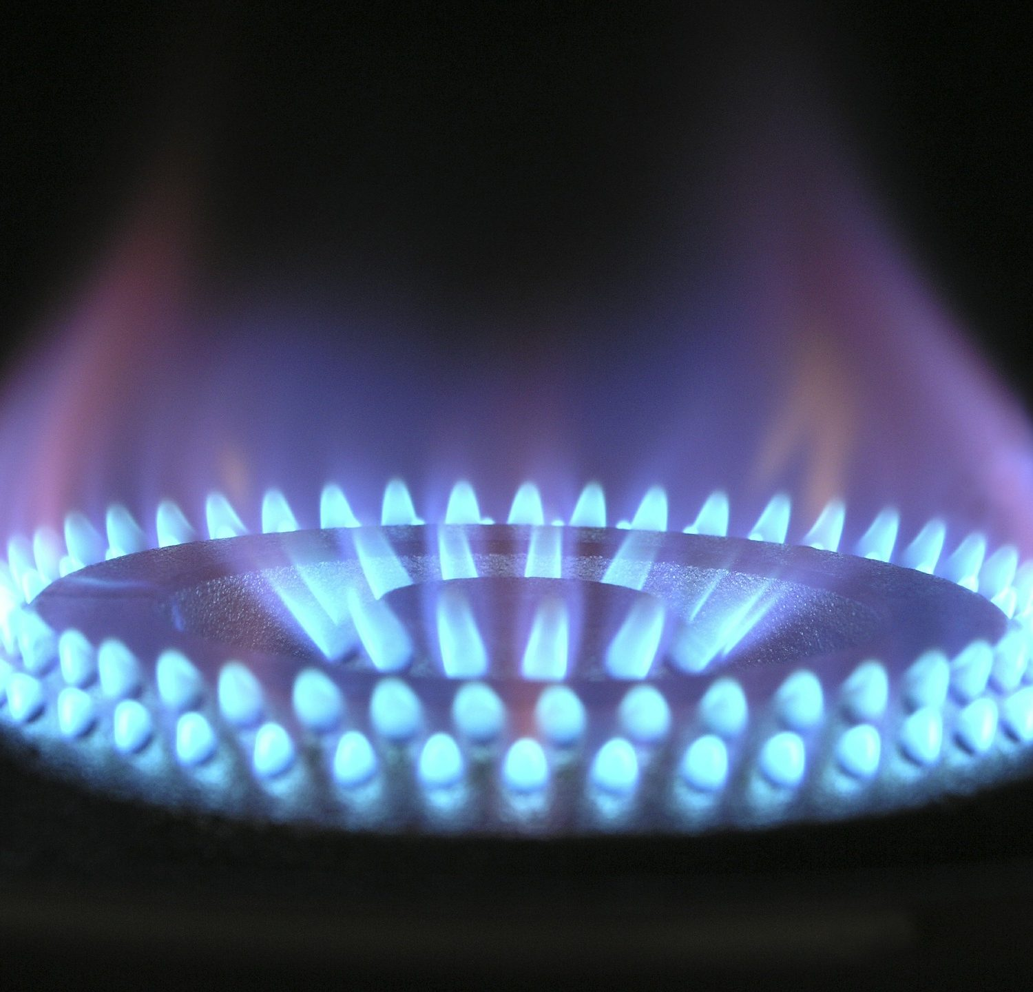 The story of gas: A million years in the making